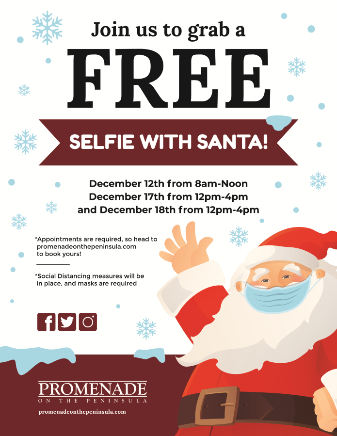 SELFIES WITH SANTA FLYER
